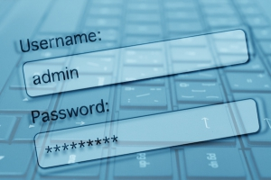 Wordpress Username and Password Protection